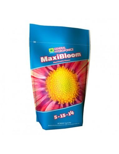 MaxiBloom