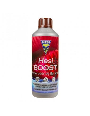 Hesi Boost