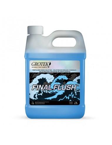 Final Flush Regular