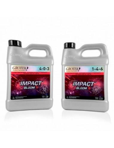 Impact Bloom A+B