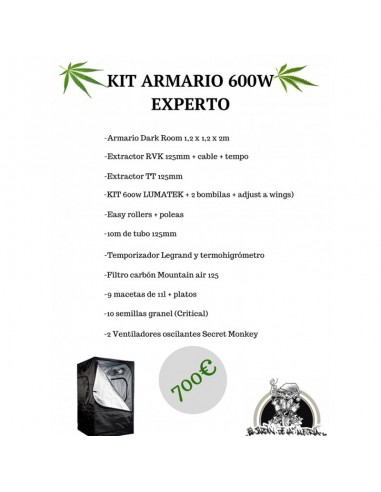 Kit Armario 600w Experto